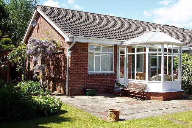 Thumbnail Bungalow to rent in The Steads, Morpeth
