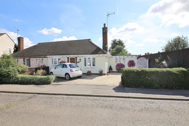 Thumbnail Bungalow for sale in Percy Cottis Road, Rochford