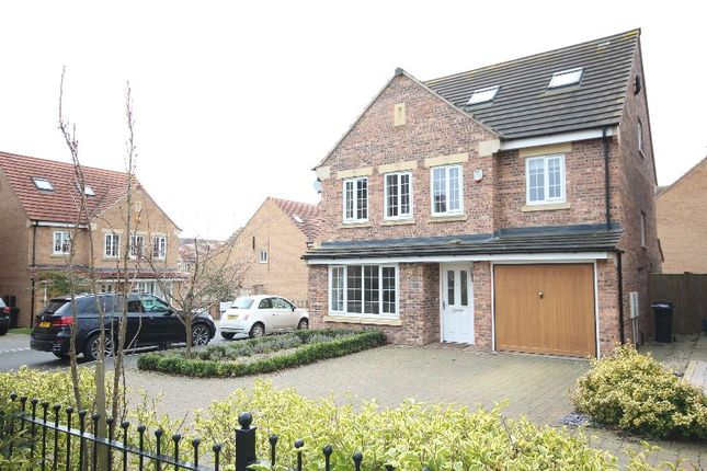 Thumbnail Detached house to rent in Principal Rise, Dringhouses, York