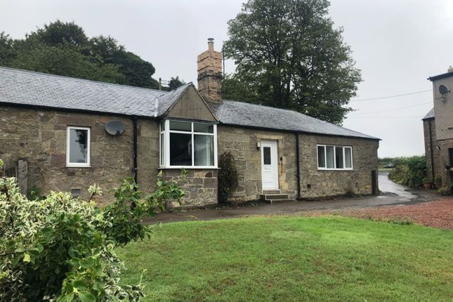 Thumbnail Semi-detached bungalow to rent in West Link Hall Cottages, Chathill, Alnwick