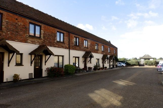 Thumbnail Terraced house to rent in Trenowath Place, King's Lynn