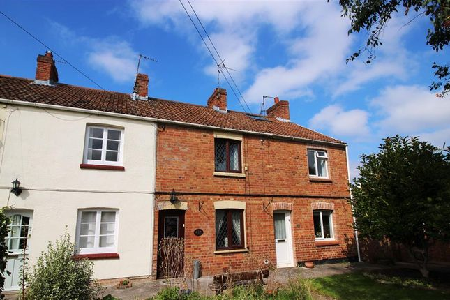 Thumbnail Property to rent in Hill Terrace, Bishops Hull, Taunton