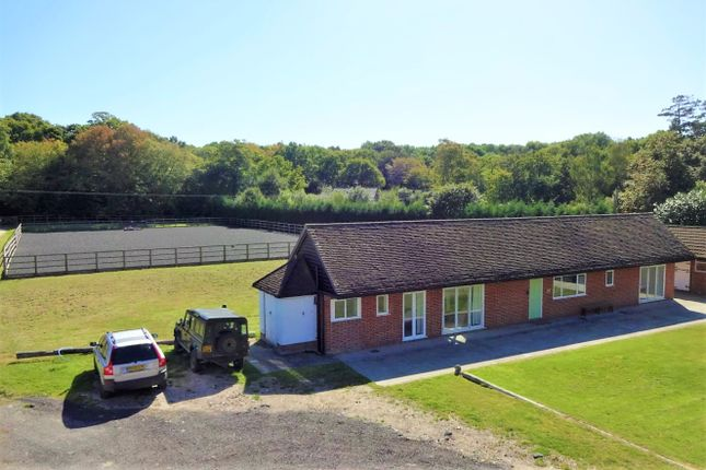 Thumbnail Detached house to rent in Rusper Road, Newdigate, Dorking