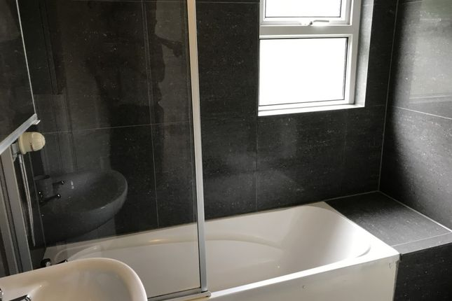 Thumbnail Property to rent in Alexandra Road, Mutley, Plymouth