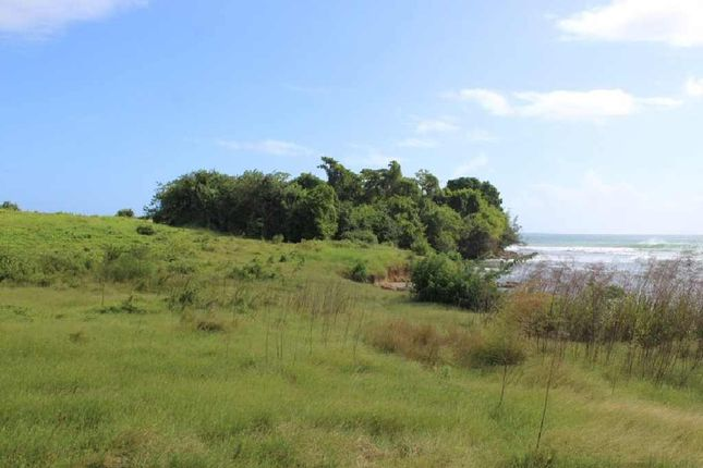 Thumbnail Land for sale in Black Bay, Vieux Fort, Saint Lucia