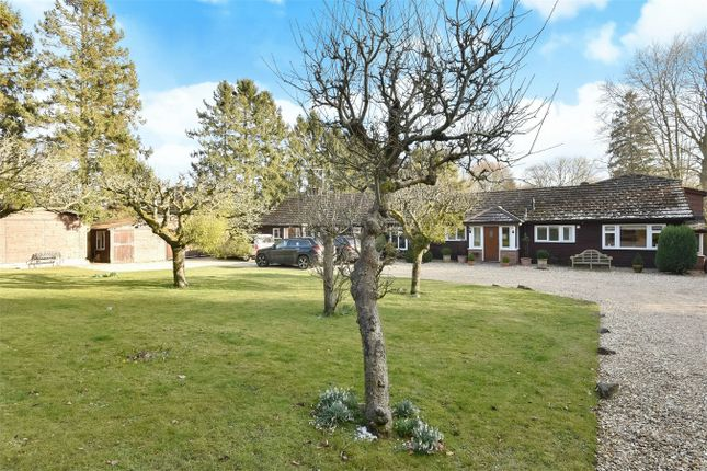 Thumbnail Detached house for sale in Main Road, Itchen Abbas, Winchester
