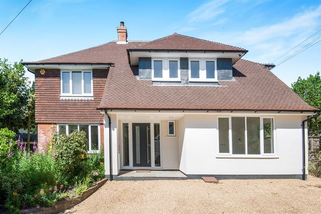 Thumbnail Detached house for sale in Hastings Road, Bexhill-On-Sea