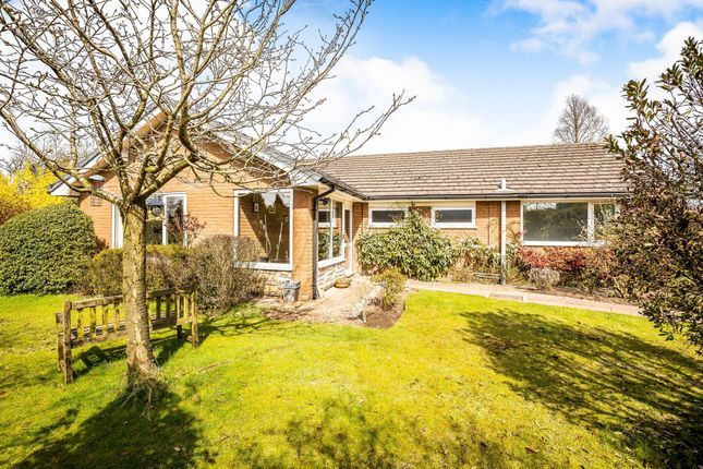 Thumbnail Bungalow to rent in The Spinney, Norley, Frodsham