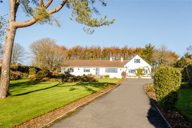 Thumbnail Bungalow for sale in Haytor, Newton Abbot, Devon
