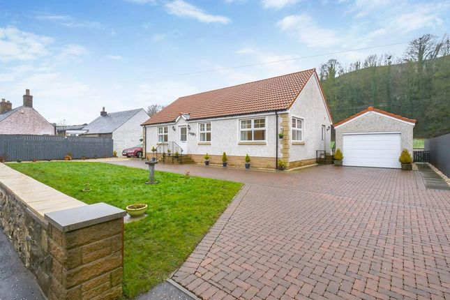 4 bed detached bungalow for sale in Cupar Road, Newburgh, Cupar KY14