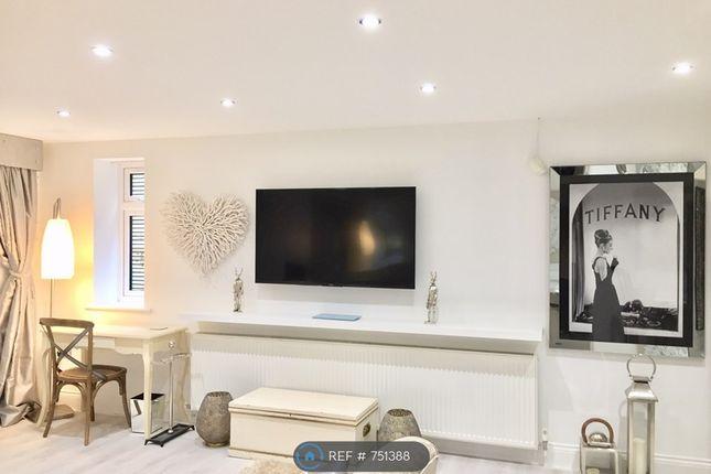 Sony 55 Smart Tv & Work Area