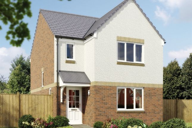 "Thumbnail Detached house for sale in ""The Elgin II Detached"" at Craigmuir Way, Bishopton"