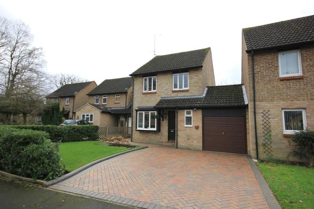 Thumbnail Detached house to rent in Torridon Close, Horsell, Woking