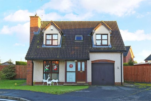 Thumbnail Detached house for sale in Avondale Manor, Craigavon, County Armagh
