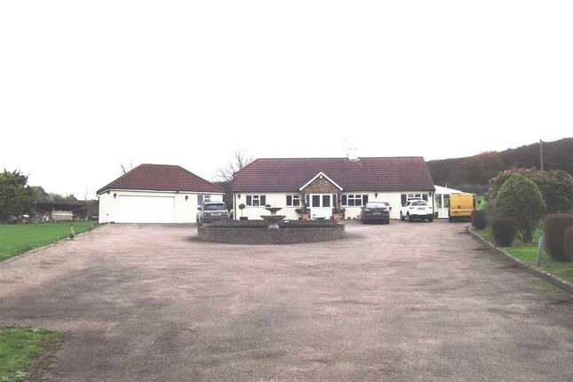Thumbnail Detached house for sale in Holyfield, Waltham Abbey