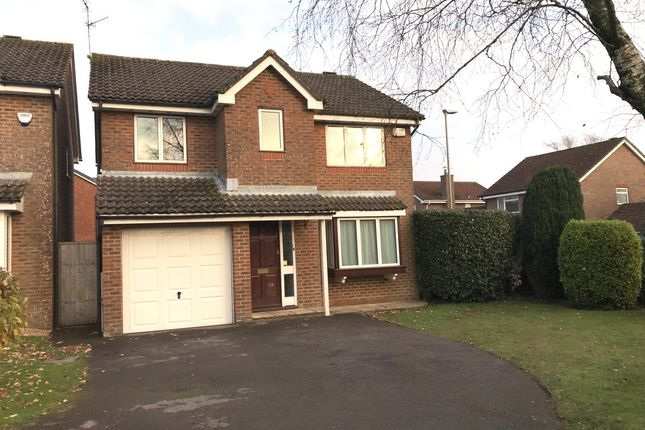 Thumbnail Detached house to rent in Linden Park, Shaftesbury
