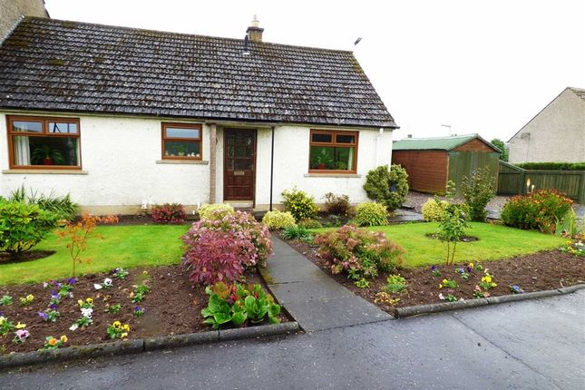 Thumbnail Semi-detached house for sale in Straiton Terrace, Balmullo, Fife