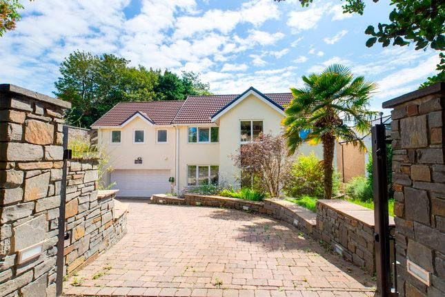 Thumbnail Detached house to rent in Langland Court Road, Langland, Swansea