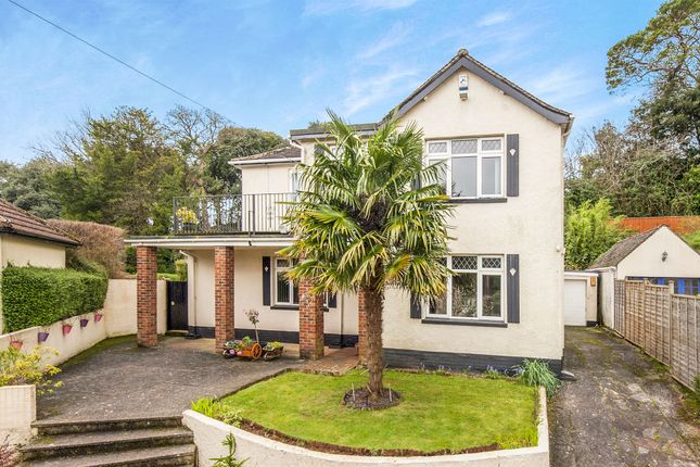 Thumbnail Detached house for sale in Dosson Grove, Torquay