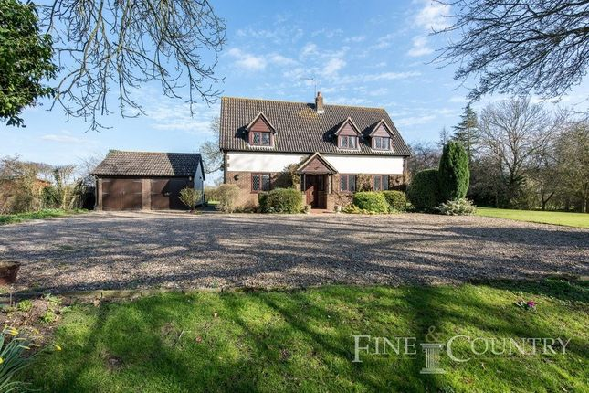 Thumbnail Detached house for sale in Langton Green, Eye