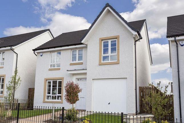 "Thumbnail Detached house for sale in ""Craigievar"" at Eliburn Office Park, Livingston"