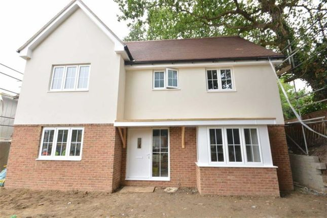 Thumbnail Detached house for sale in Amherst Road, Hastings, Sussex