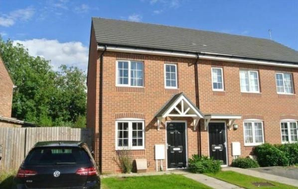 Thumbnail Property to rent in Windsor Avenue, Peterborough