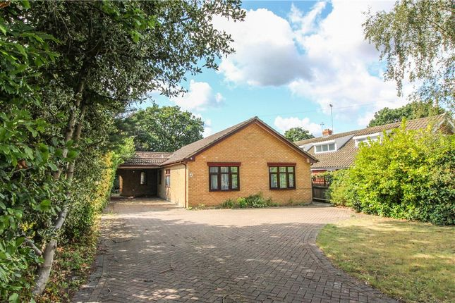 Thumbnail Bungalow for sale in Yeovil Road, Owlsmoor, Sandhurst