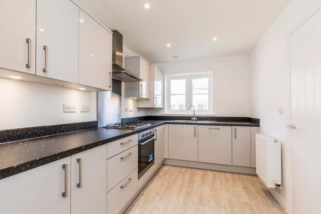 Thumbnail Semi-detached house to rent in Longacres Way, Chichester