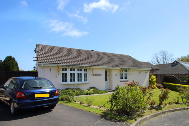 Thumbnail Detached bungalow to rent in Stirling Way, Christchurch