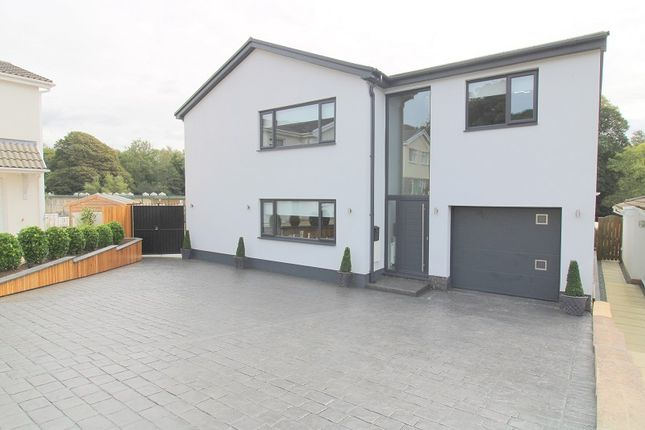 Thumbnail Detached house for sale in Stanley Place, Cadoxton, Neath, Neath Port Talbot.