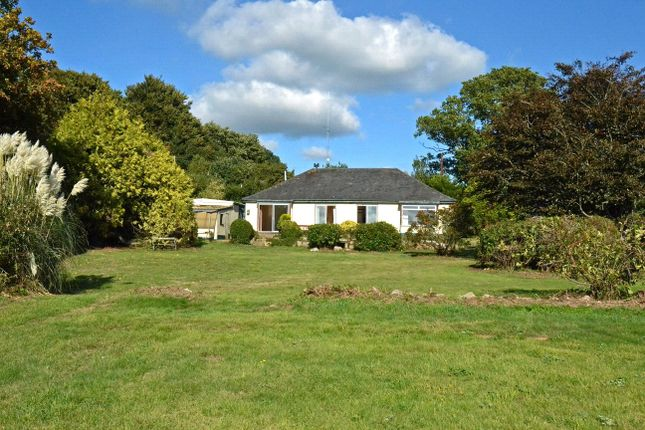 Thumbnail Detached bungalow for sale in The Common, Exmouth