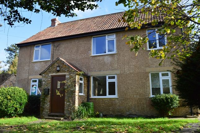 Thumbnail Detached house for sale in Manor Street, West Coker
