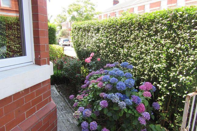 Front Garden of Carlton Street, Old Trafford, Manchester M16