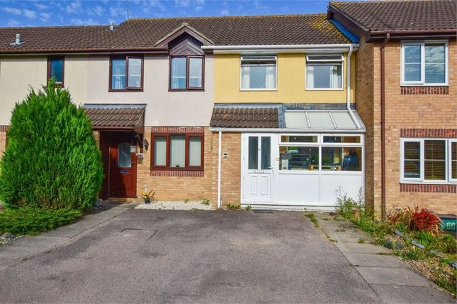 Thumbnail Terraced house for sale in Albrighton Croft, Highwoods, Colchester, Essex
