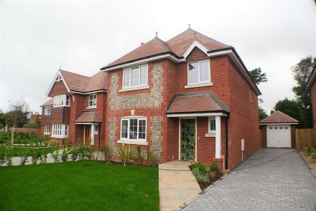 Thumbnail Detached house for sale in St Winefrides Road, Plot C, Littlehampton