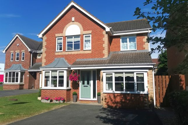 Thumbnail Detached house for sale in Moorhen Road, Hartlepool