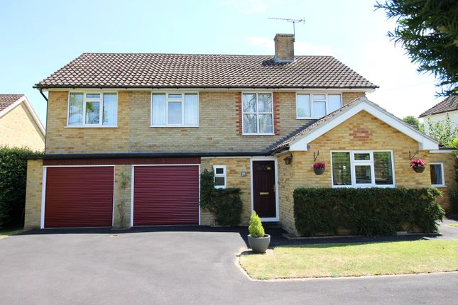 Thumbnail Detached house for sale in Lower Road, Bookham