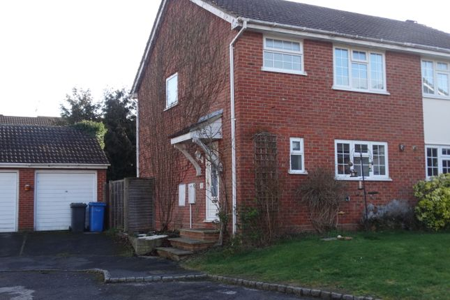Thumbnail Semi-detached house to rent in Hawthorne Rise, Hook