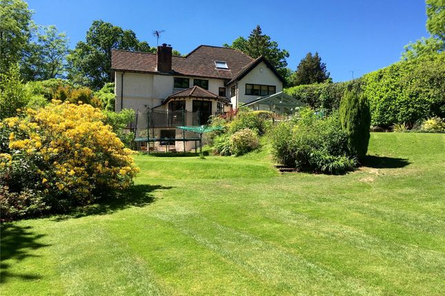 Thumbnail Detached house for sale in Holdfast Lane, Haslemere, Surrey