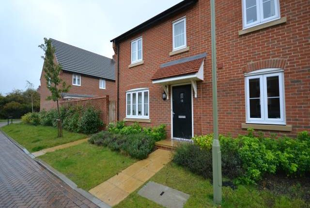 Thumbnail Semi-detached house to rent in Chris Muir Place, Great Western Park, Didcot