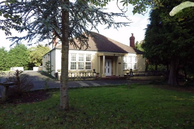 Thumbnail Detached bungalow to rent in Maggs Lane, Whitchurch, Bristol, Somerset