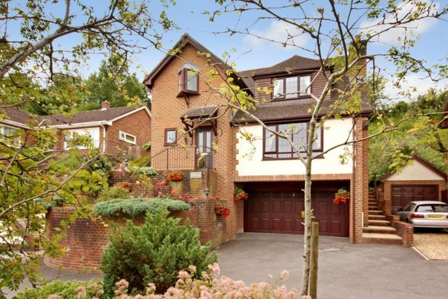 Thumbnail Detached house for sale in Jade Close, Spetisbury, Blandford Forum, Dorset