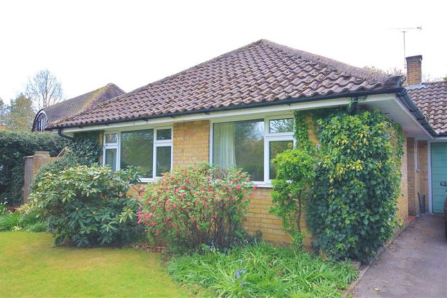 Thumbnail Bungalow for sale in Saunders Lane, Woking, Surrey