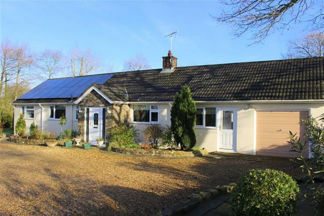 Thumbnail Detached bungalow for sale in Begelly, Kilgetty