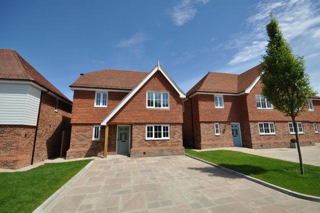 Thumbnail Detached house for sale in Oak Fields, Hailsham