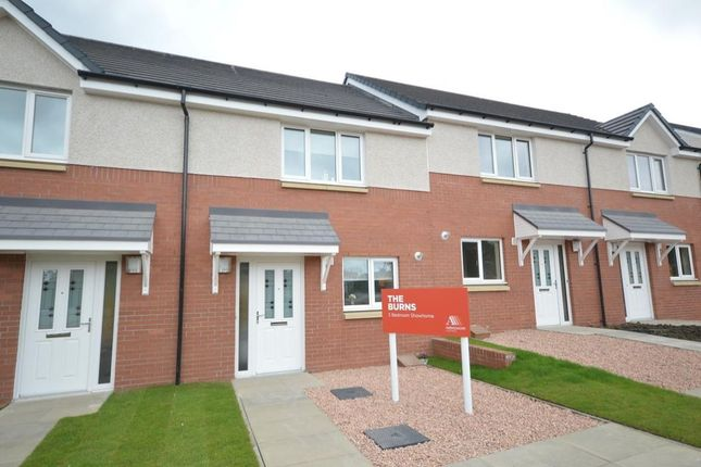 Thumbnail Terraced house for sale in Brown Street, Renfrew