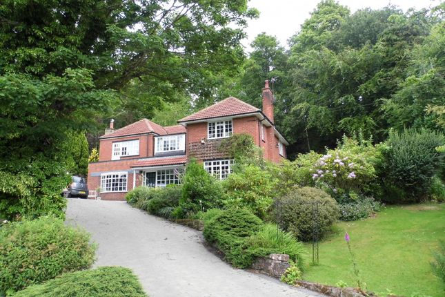 Property for sale in Thorp Avenue, Morpeth