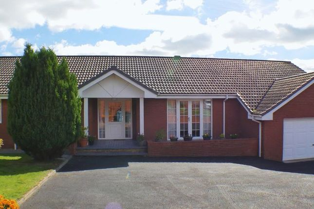 Thumbnail Detached bungalow for sale in Eagles Nest, Horsleyhead, Wishaw