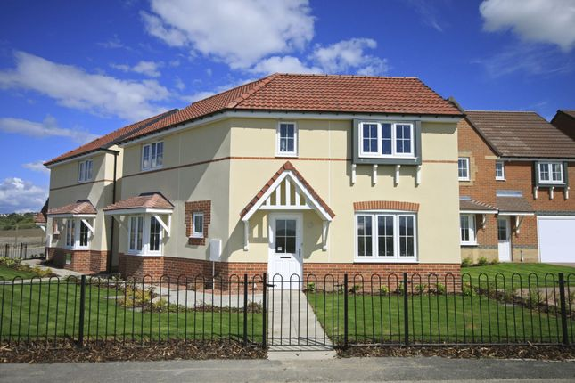 "Thumbnail Link-detached house for sale in ""Faringdon"" at Ponds Court Business, Genesis Way, Consett"